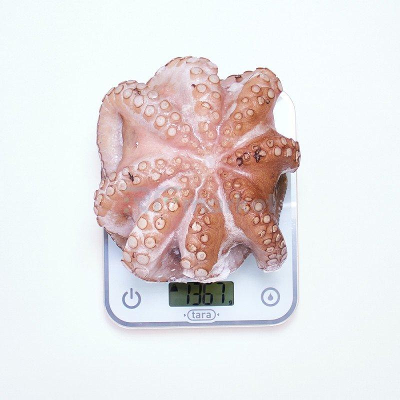 Осьминог целый, 1,3 кг
