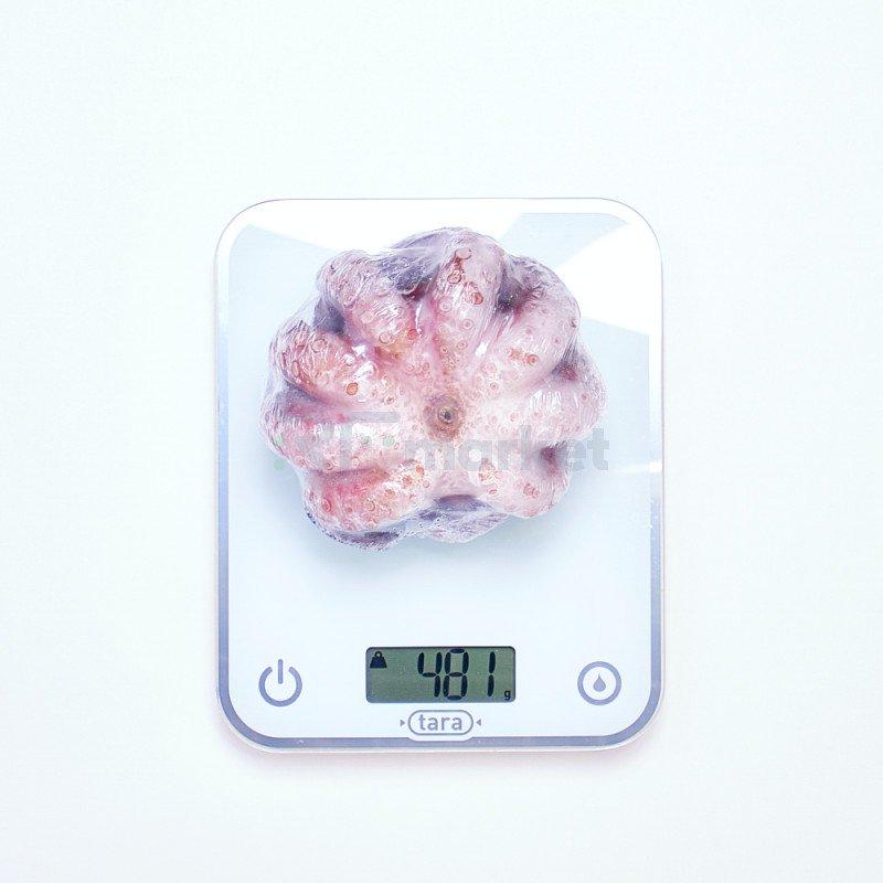 Осьминог Индонезийский, целый, 500 гр