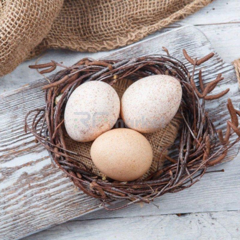 Яйцо цесариное, 10 шт