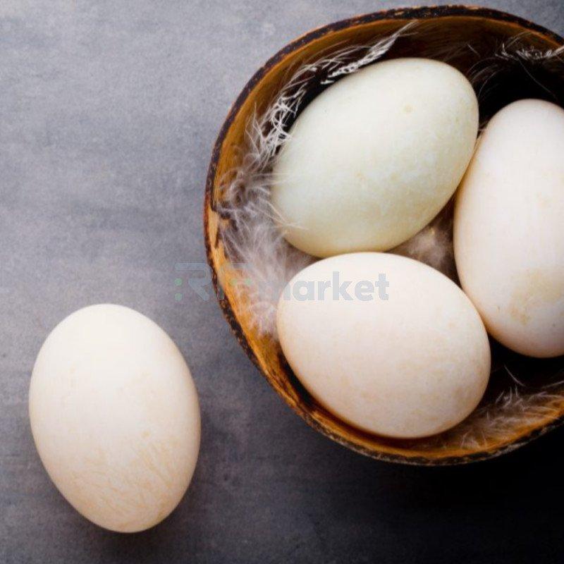 Яйцо гусиное, 1 шт