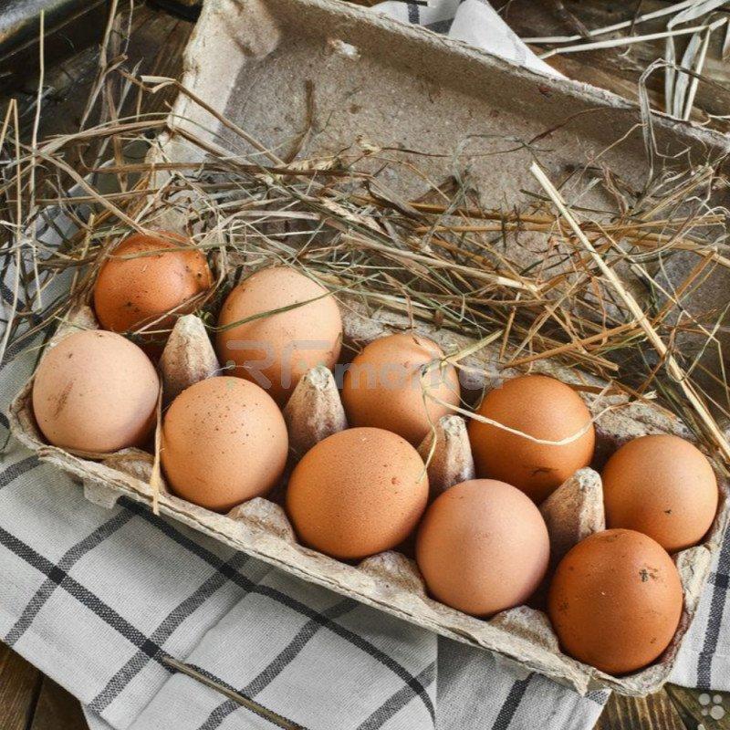 Яйцо куриное домашнее, 10 шт, Тамбов