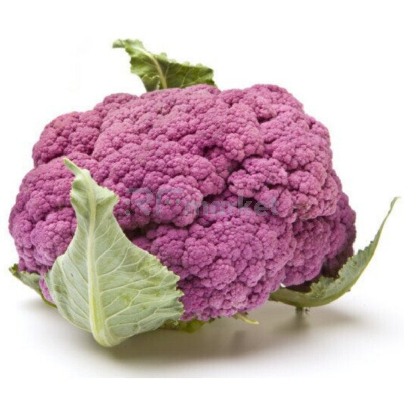 Капуста Цветная фиолетовая