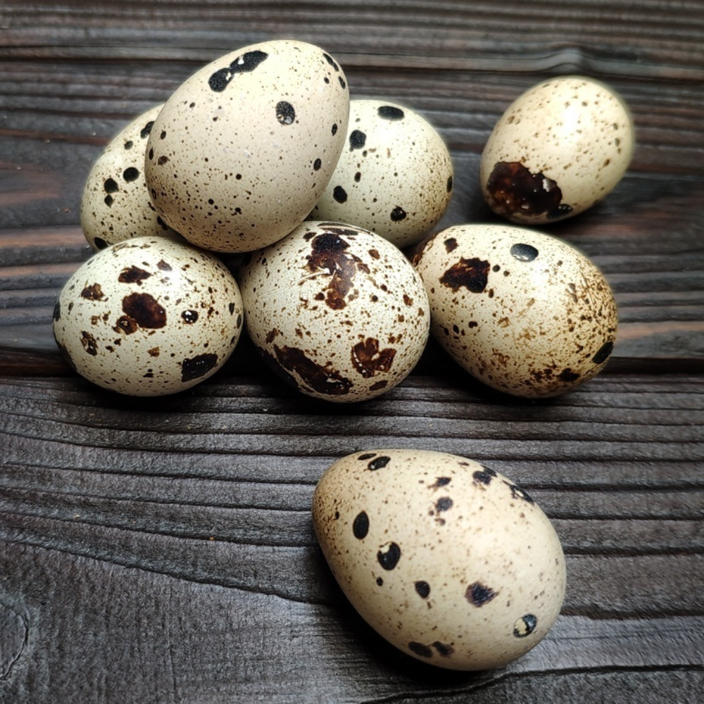 Яйцо перепелиное, фермерское